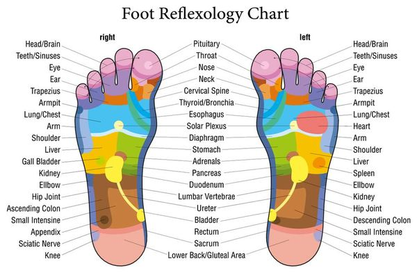 What are the benefits of a foot massage foot reflexology chart